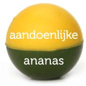 bikkel_naam_dubbel_erin_03_ananas