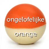 bikkel_naam_dubbel_erin_24_orange