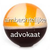 bikkel_naam_dubbel_erin_30_advokaat